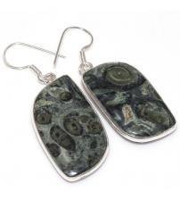 Серебряные серьги с камбаба яшмой